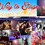 Stage de Comédie Musicale - Way To Stage