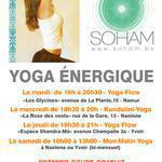 Soham - Delphine Notte - Cours  de Yoga énergiques