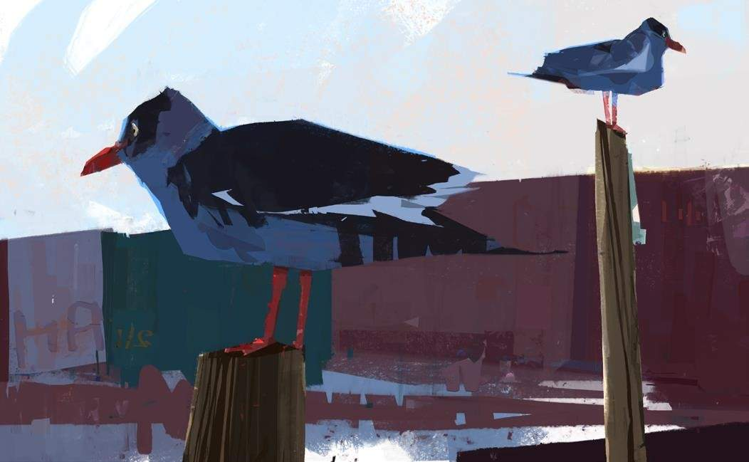 Concert de Tom Bourgeois et Fil Caporali, Moanin' birds