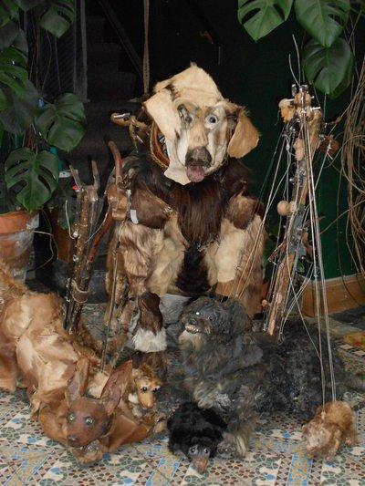 Maria brouillard le petit cirque de chiens et autres animaux de compagnie bruxelles 1000 - Toto l escargot ...