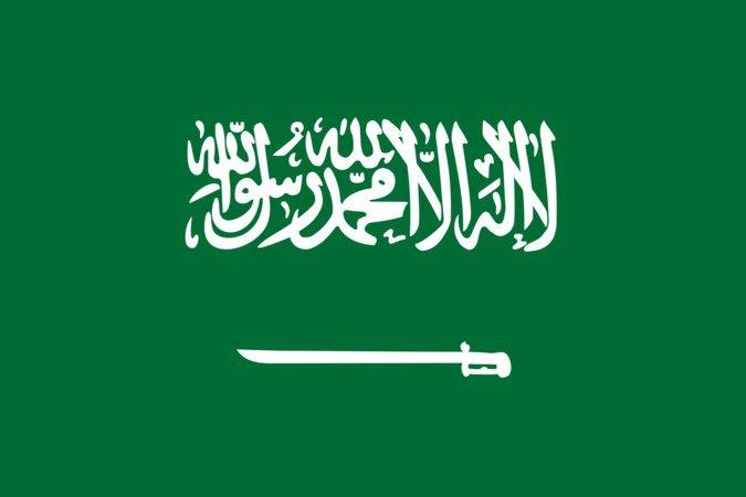 Cherche personne d'origine Saoudienne