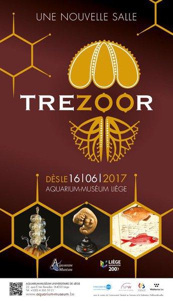 « TréZOOr » : le nouvel espace muséal permanent de l'Aquarium-Muséum d