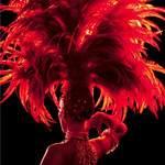 Glamour show - Spectacle,Travesti Show Transformiste, cabaret,